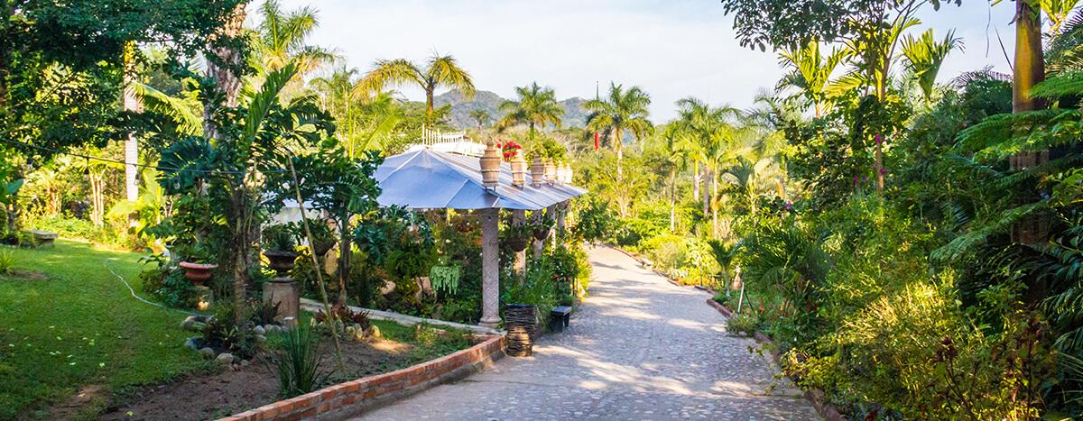 Visitar jardin botanico