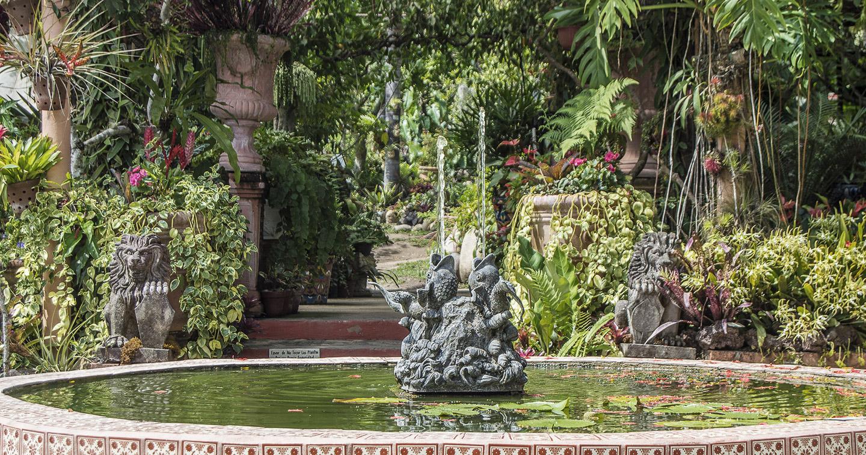 Jardín Botánico Vallarta